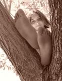 3rd - My Tree . . . My Friendby CindyD