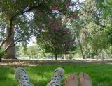 Kickin Back in the Park by CindyD