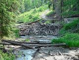 Beaver Dam by canadian_ann