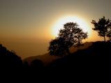 Sunny...By Vikas