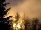 Sunrise by MickeyD