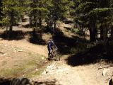 Kern Plateau, May, 2004