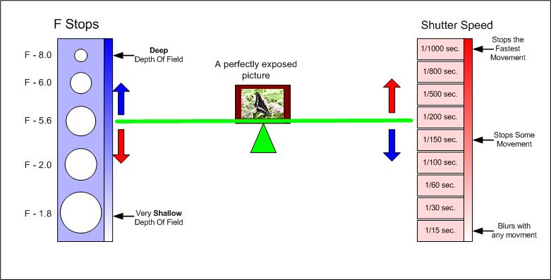Relationship Between Aperture and Shutter Speed