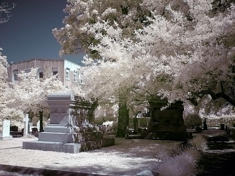 Charleston Graveyard 1