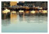Boston Harbor: White Boats
