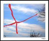ds20050101_0080a1wF Sky X.jpg