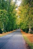 Laneway at Blair Atholl Estate