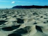 Cannon Beach_uzi5.jpg