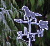 A Frosty day in January (Onalaska)