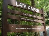 Lata Kapor