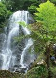 waterfall004JPG.JPG