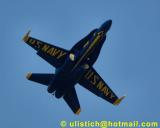 Blue Angels Home comming Pensacola 2001