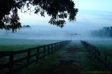 Farmlife Robertsdale Alabama