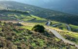 Winding road near Argos