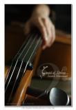¡m Sound of Strings ¡n2nd Movement  ¡i©¶¥~µ¡j ²Ä¤G³¹