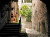 Assisi - in the Umbrian region