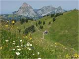 Hochybrig, Gr. u. Kl. Mythen (Schwyz)