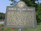 State of Georgia Historical Marker Near Jacksonville, Ga.