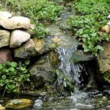 2000 waterfall and watercress