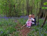 sitting in the bluebells