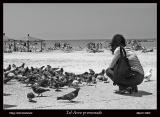Tel-Aviv_promenade_16.jpg