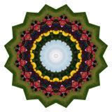 Kaleidoscopes Created from Photos