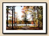 Lake Lane