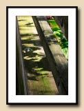 Shadows on Rail