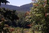 View Blue Ridge Mountains