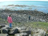 Beach at Eyrarbakki