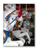 Carousel HorsesMagic Kingdom