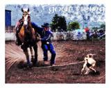 Goat-Tieing492-2004.jpg