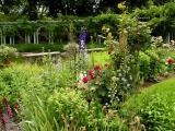 Westbury flower display
