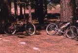 Resting at McGill Campground, Mount Pinos