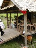 laos0201.jpg