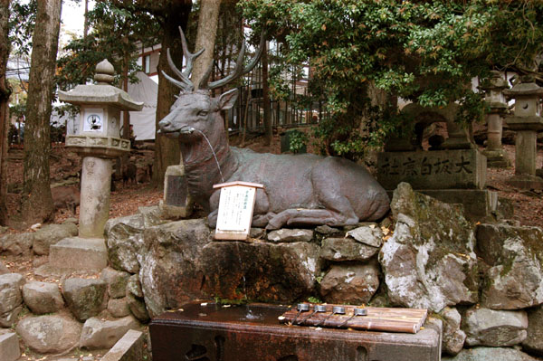 The Nara deer are said to be divine messengers