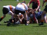 Rugby in Boulder, Colorado