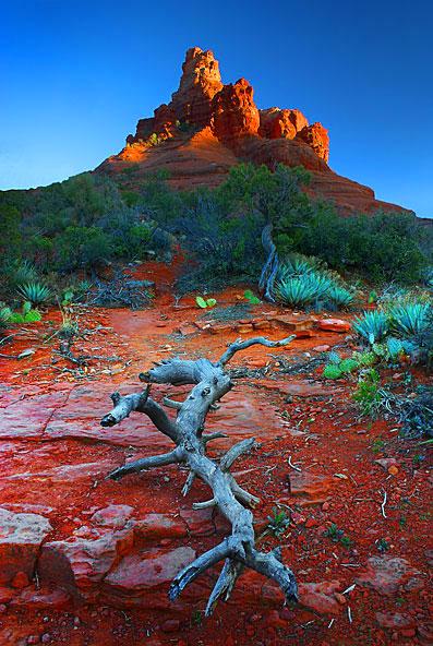 Bell Rock Sunset