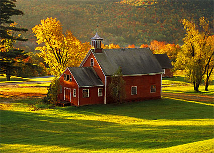 Olde Farm  #288