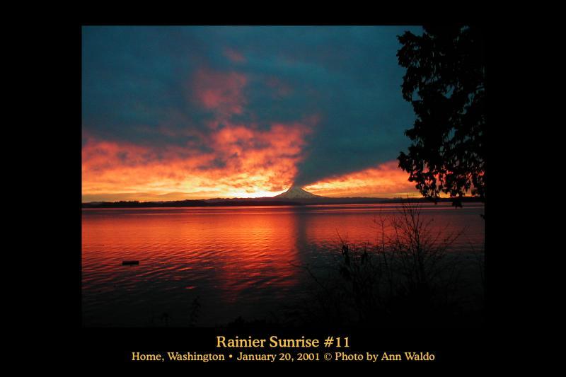 Rainier Sunrise #11