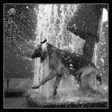 Vannfangeren (Water catching)