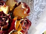 dried roses ~ January 15th