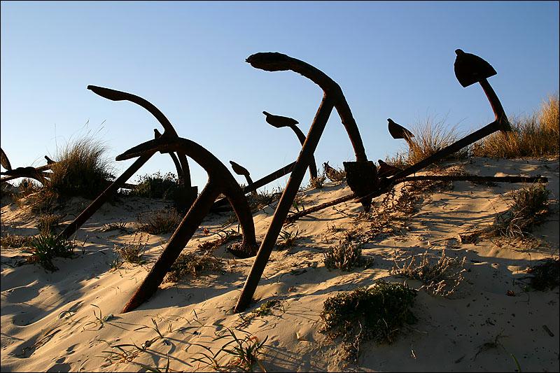01.01.2005 ... In the BEACH OF BARRIL - ALGARVE -PORTUGAL
