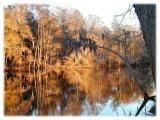 Lumber River2