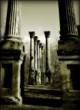 windsor ruins (bw2)