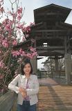 Gate, magnolias