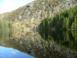 Natures own Mirror