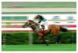 Horse Racing in Hong Kong