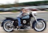 Harley Bad Boy
