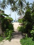 Ko Pha Ngan - walk from my hut to beach